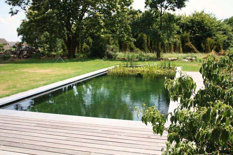 Fotografias piscinas biol gicas for Piscinas biologicas