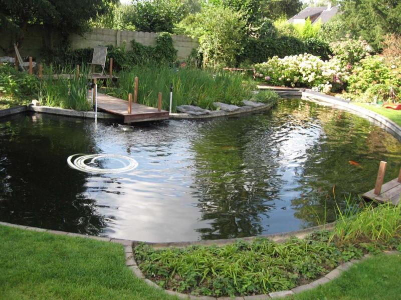 fotografias piscinas biol gicas